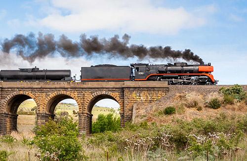 Viaje en tren de vapor + visita al Santuario de HealesVille