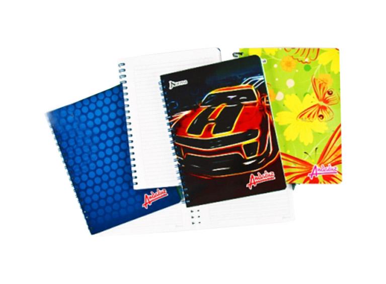 Cuaderno 100 hojas