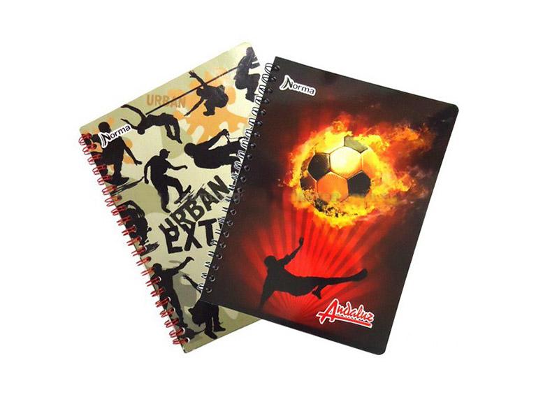 Cuadernos 60 hojas