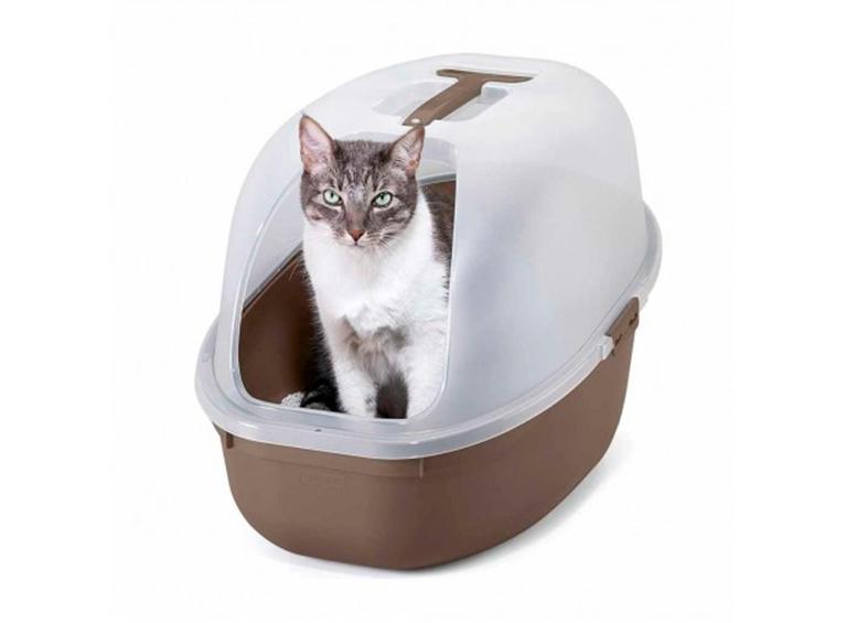 Arenero para gato
